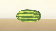 S4E12.171 Watermelon