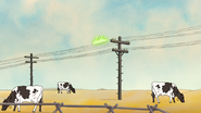 S4E20.095 Telephone Lines Passing Cows