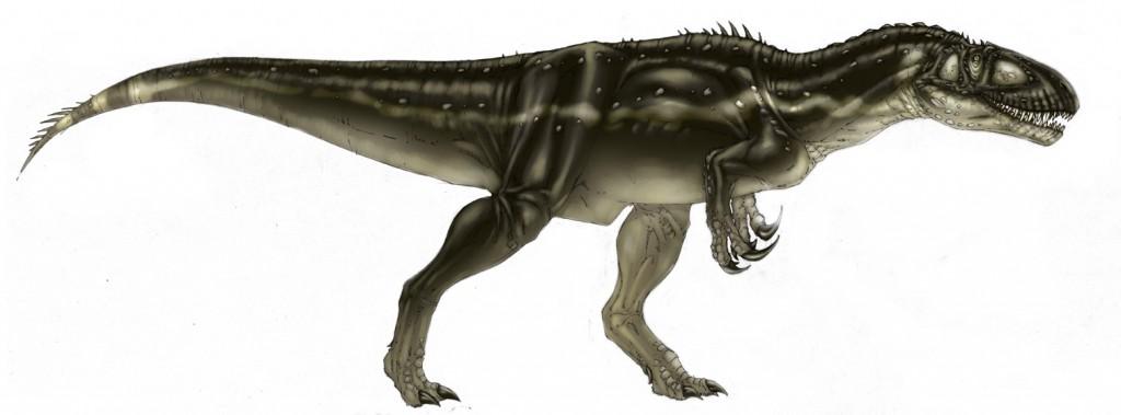 Megalosaurus | Theropods Wiki | Fandom powered by Wikia