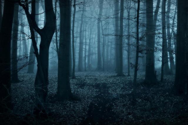 File:Slender In Woods.png