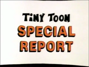 Tiny Toon Special Report