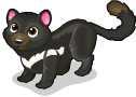 Tasmanian devil cat static