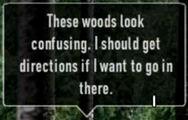 Whistlersforestconfusing2