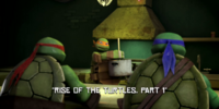 Rise of the Turtles, Part 1