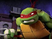 Raphael-image1