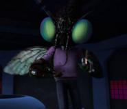 Fly holding choco