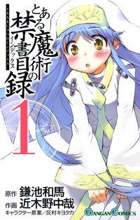 Toaru Majutsu no Index (manga)