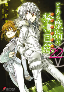 Toaru Majutsu no Index Light Novel v22 cover