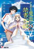 Toaru Majutsu no Index Light Novel v02 cover