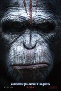 Dawn of the planet of the apes ver4