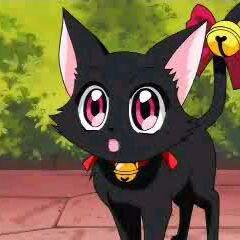 Ichigo as a cat.