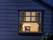 Mammoth Manhunt - Window