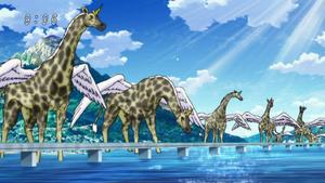 Several Giraffebirds