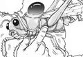 Shoyu Grasshopper