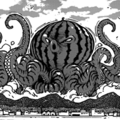 OctopusuikaHS