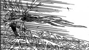 Teppei's Wood Spear