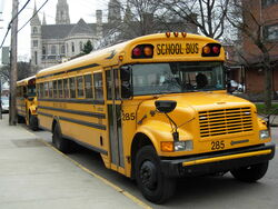 Yellow school buses Pittsburgh