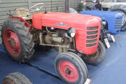 Zetor 3013 vineyard (unrestored) at Malvern 09 - IMG 5585