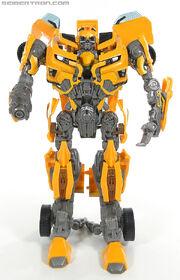 R leader-bumblebee-079