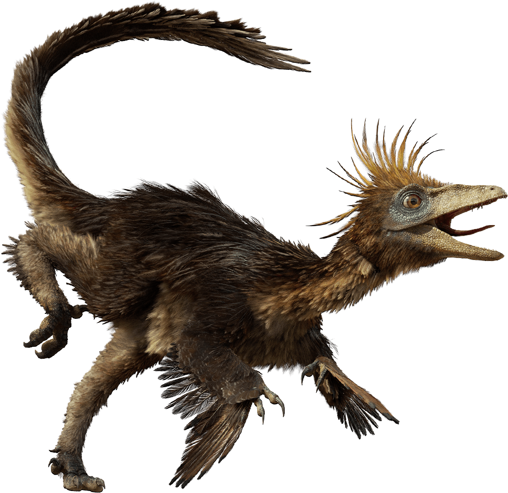 http://vignette3.wikia.nocookie.net/trilogy-of-life/images/e/e9/Troodon.png/revision/latest?cb=20130913003659 Walking