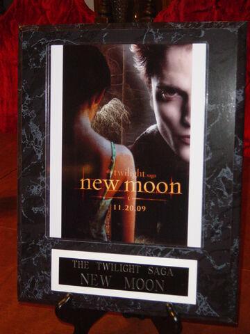 File:12x15 Movies - Twilight New Moon 2.JPG