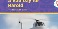 A Bad Day for Harold (book)