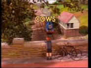 CowsUKtitlecard