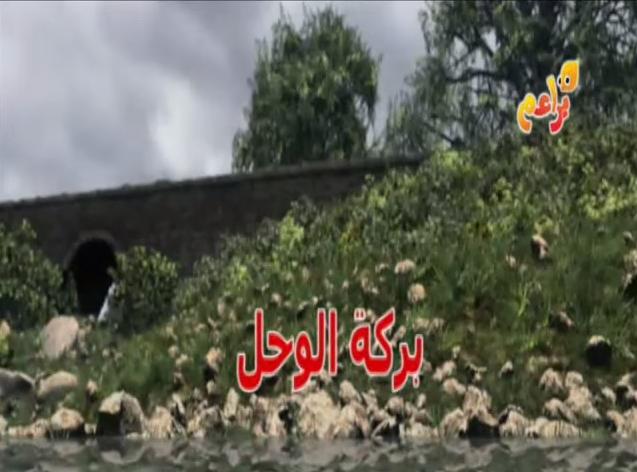 File:Splish,Splash,Splosh!ArabicTitleCard.PNG