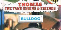 Bulldog (Buzz Book)