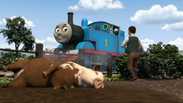 File:ThomasAndThePigs15.png