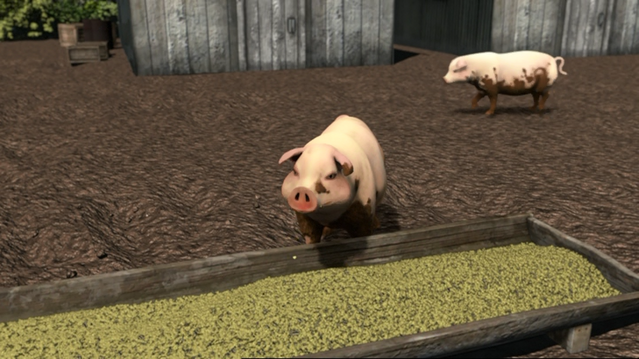 File:ThomasAndThePigs18.png