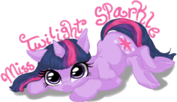 Miss Twilight Sparkle Banner