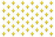 KingdomofFranceflag