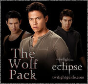 Wolf-1-pack-eclipse