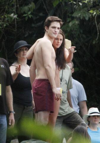 File:PattinsonlifeWaterfall24.jpg