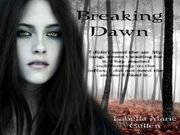 Breaking-Dawn-