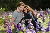 212px-Edward Bella flowers