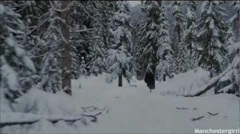 Breaking Dawn; Part Two - Battle Scene