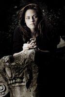 Kristen-stewart-20081111-470685