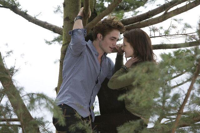 File:Twilight33.jpg