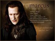 Marcus-bio-900