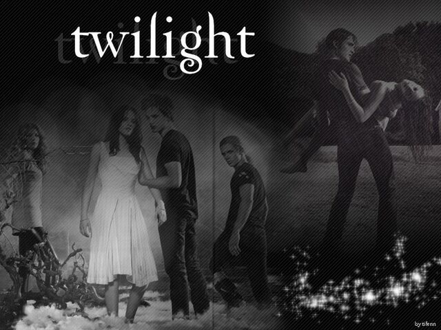File:Wallpaper-Twilight-twilight-series-1820864-800-600.jpg