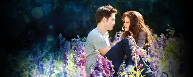 File:Bella and Edward in the flower field.jpg