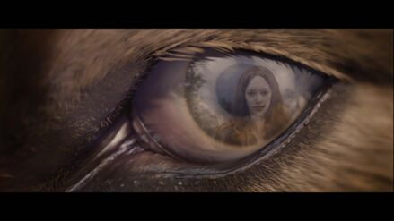 Jacob-eye-Renesmee-BD