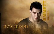 Emmett-Cullen-Wallpaper-twilight-series-7274353-1920-1200-1-