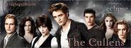 Cullens!!!!