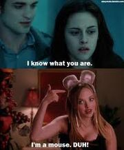 TwilightMeanGirls13