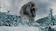 400px-Wolf-attacking