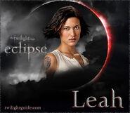 Eclipse leah