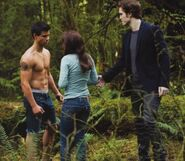 Bella, Edward and Jacob - New Moon